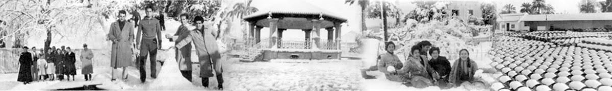 La nevada en Dos Hermanas el 3 de febrero de 1954