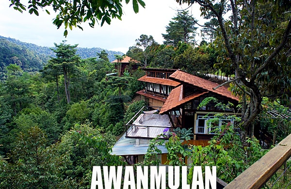 Nature Retreat Awanmulan