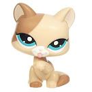 Littlest Pet Shop Multi Pack Cat (#1363) Pet