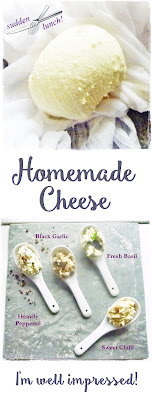 different flavoured homemade cheeses