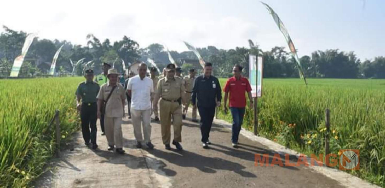Plt Bupati Kunjungi Eduwisata Padi Banjararum