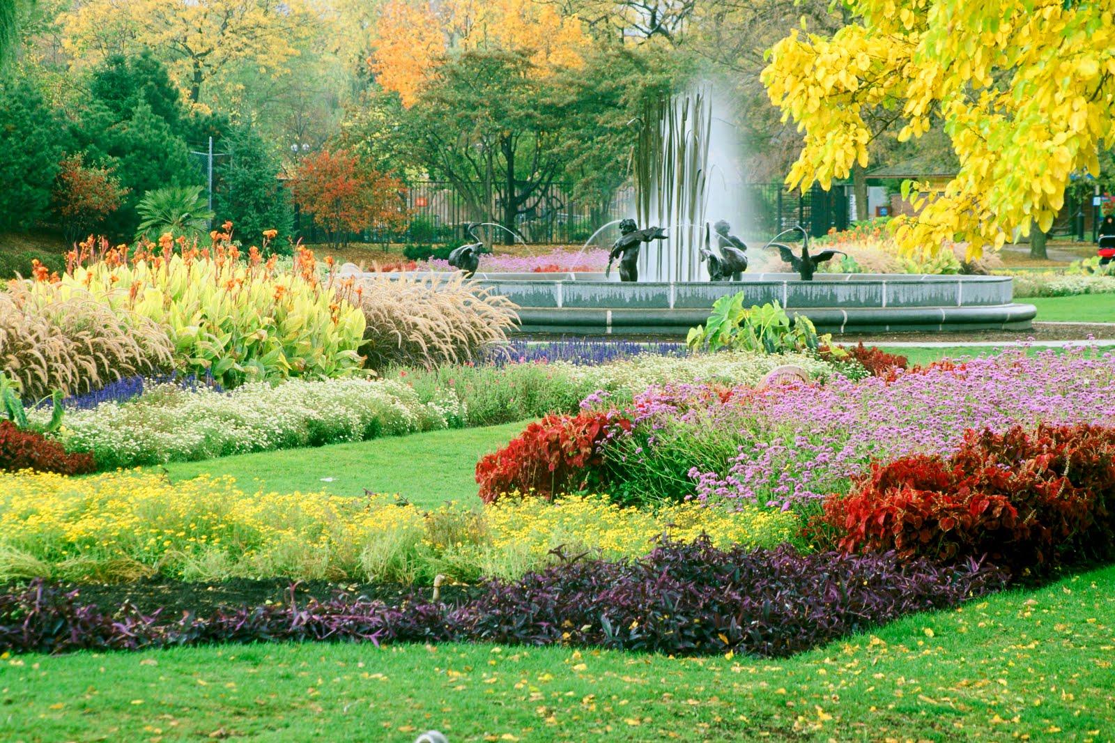 Beautiful flower garden, flower forest cool wallpapers ...
