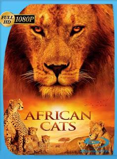 Grandes Felinos Ffricanos: Fl Feino Fel Foraje (2011) HD [1080p] Latino [GoogleDrive]