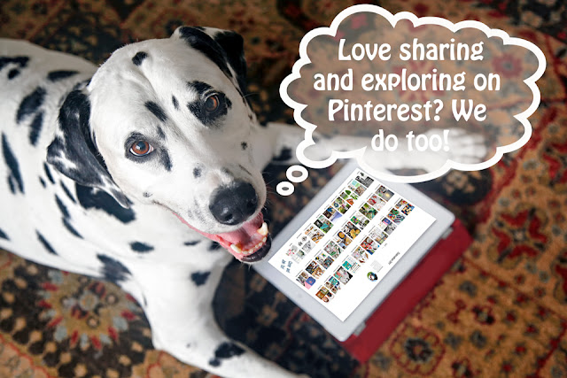 Dalmatian dog looking a Pinterest on an iPad with though bubble about Pinterest