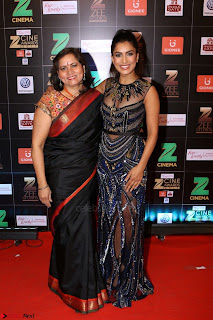 Bollywood Celebrities on the Red Carpet Of Zee Cine Awards 2017 Exclusive 080.JPG