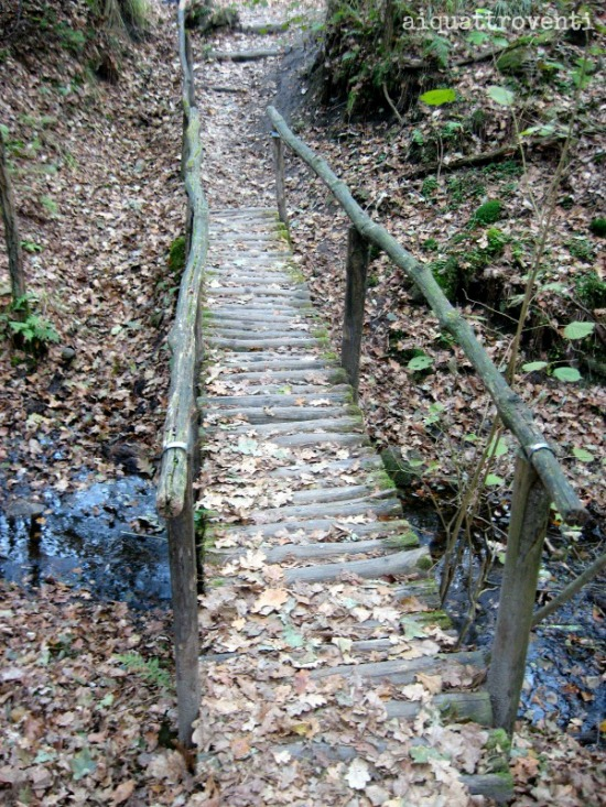 aiquattroventi-lagonidimercurago-ponte