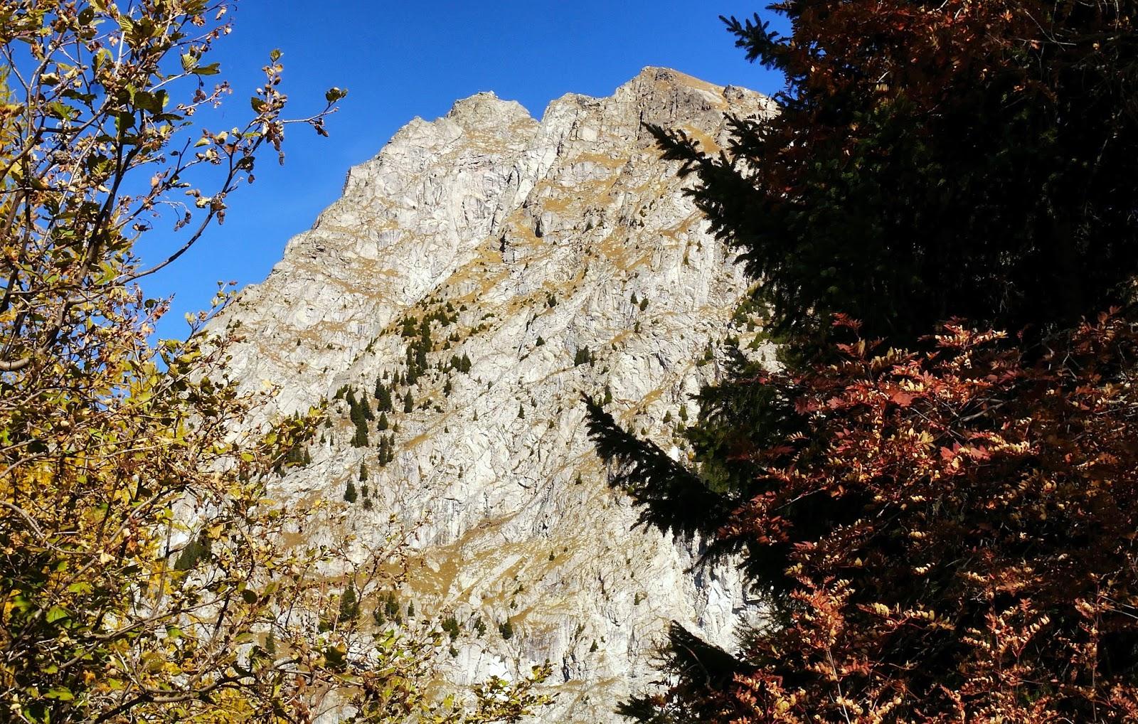 Klettersteig Ifinger : Ziele schenna eröffnet neuen klettersteig airfreshing