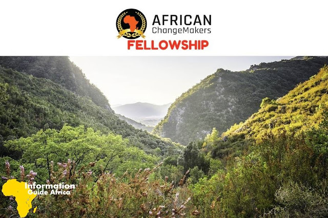 African ChangeMakers Fellowship Program (#ACFellowship) 2019