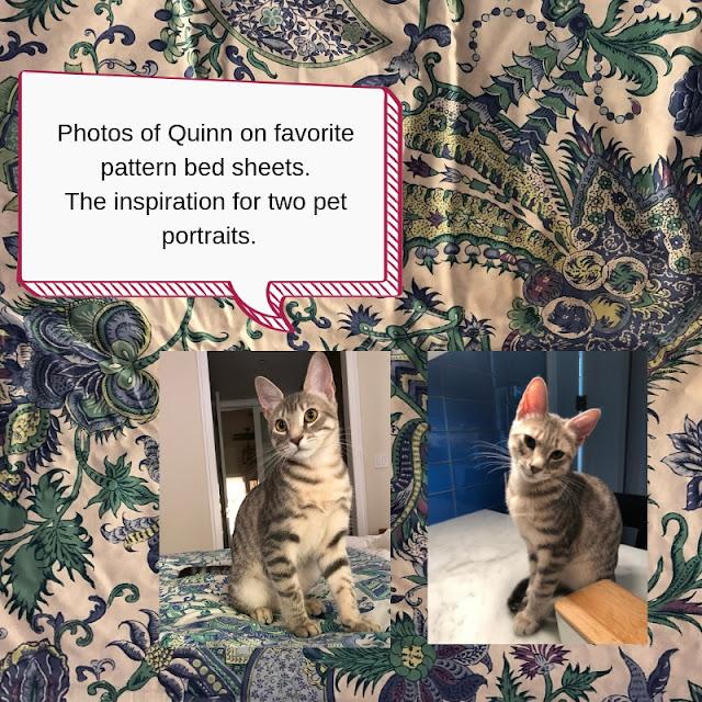 Originals photos for Quinn pet portraits.