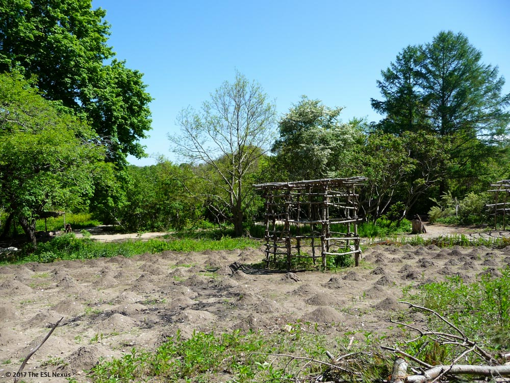 Compare & contrast Native American and Pilgrim cultures with these photos from Plimoth Plantation and the Wampanoag Homesite in Massachusetts. | The ESL Nexus