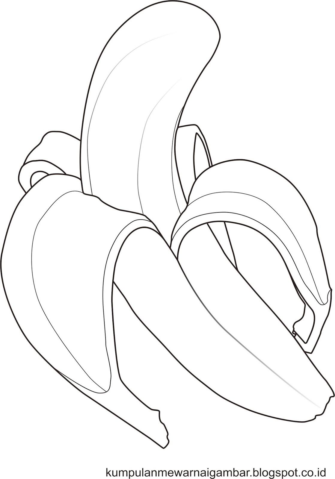 hewan binatang [darat air] buah sayuran tumbuhan bunga benda obyek tempat bermain dll Semoga dapat membantu anda untuk latihan mewarnai atau