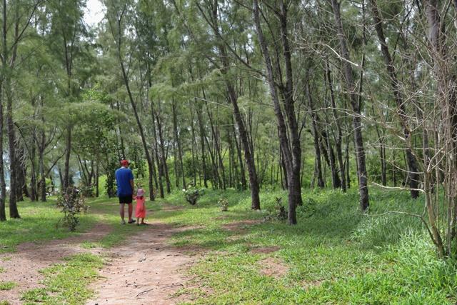 Paseando por Ile des Deux Cocos