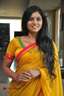 Usha Jadhav Stills in Saree at Veerappan Movie Pressmeet  0019