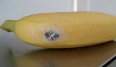 Jangan Makan Kalau Terjumpa Warna Putih Ni Kat Pisang ! Nak Tahu Kenapa??