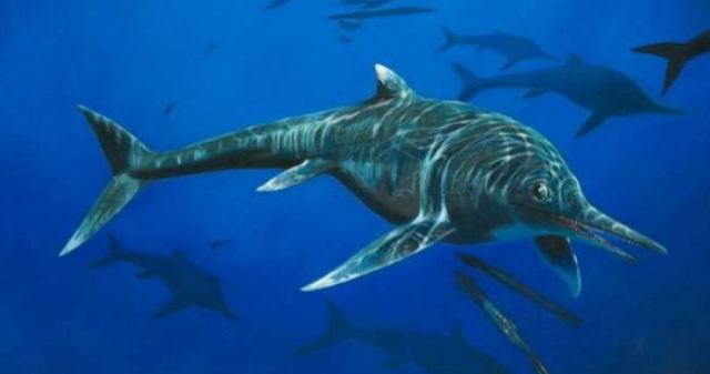 Fosil Predator Yang Diungkap Ahli