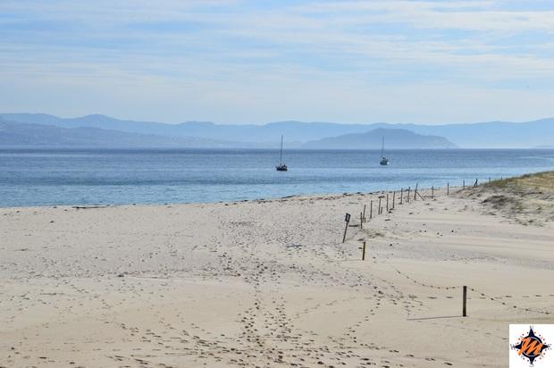 Islas  Cies, Playa da Roda
