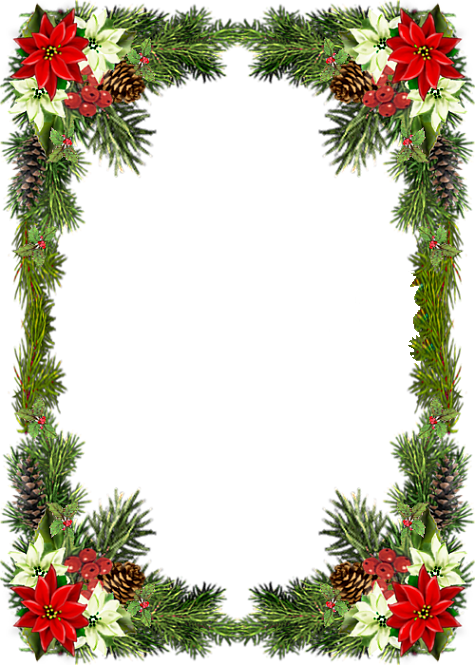 forgetmenot christmas flowers poinsettia frames. Black Bedroom Furniture Sets. Home Design Ideas
