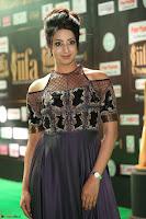 Sanjjanaa Galrani aka Archana Galrani in Maroon Gown beautiful Pics at IIFA Utsavam Awards 2017 54.JPG