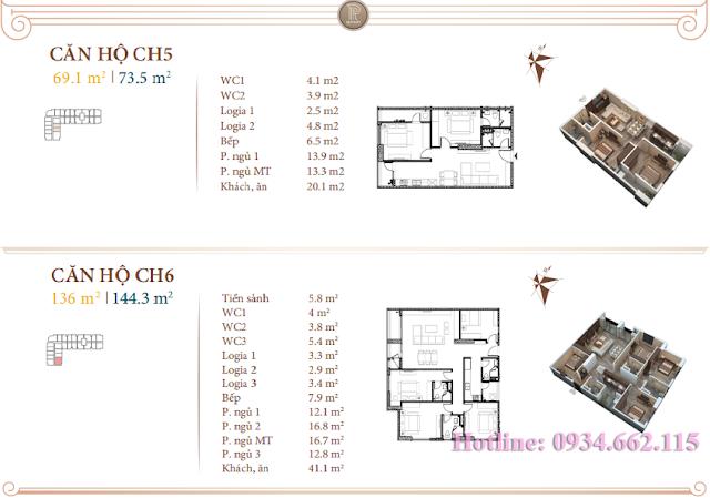Loại hình căn hộ 05-06 tòa B1 Roman Plaza