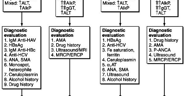 Medical Addicts: Approach to a patient with liver disease: