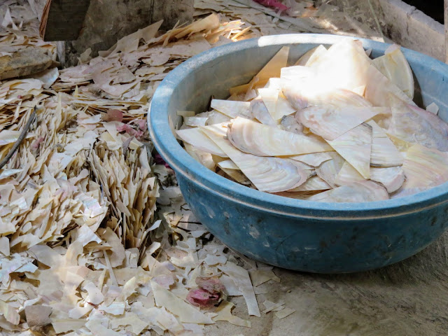 Mother-of-pearl shards near Hoi An Vietnam