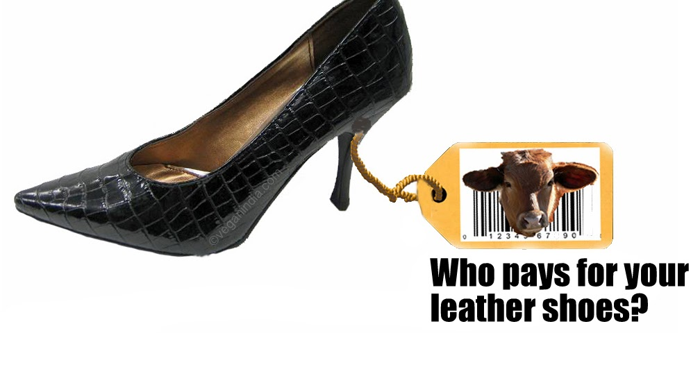 Non Leather Shoes