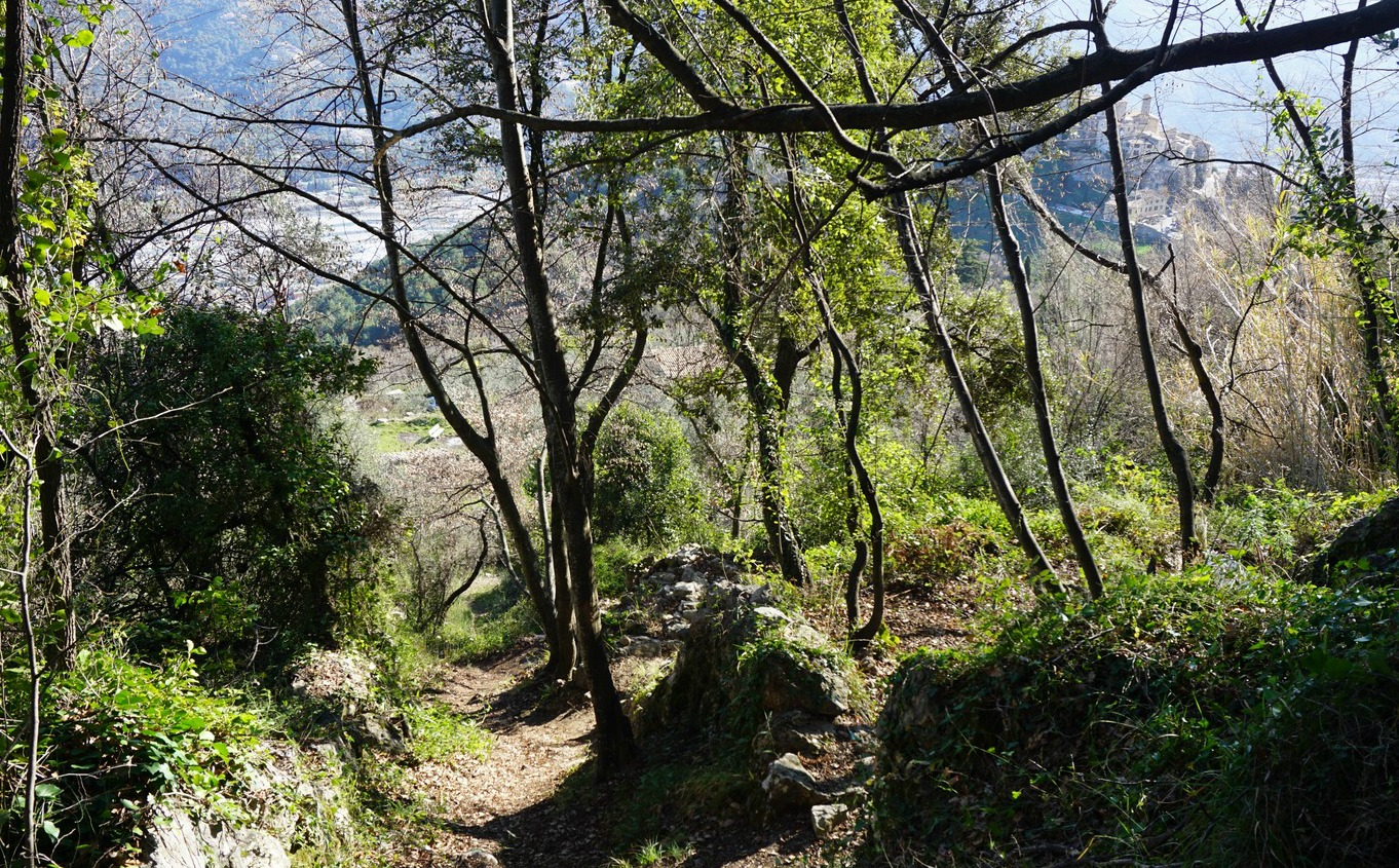 Trail just above Carros Village