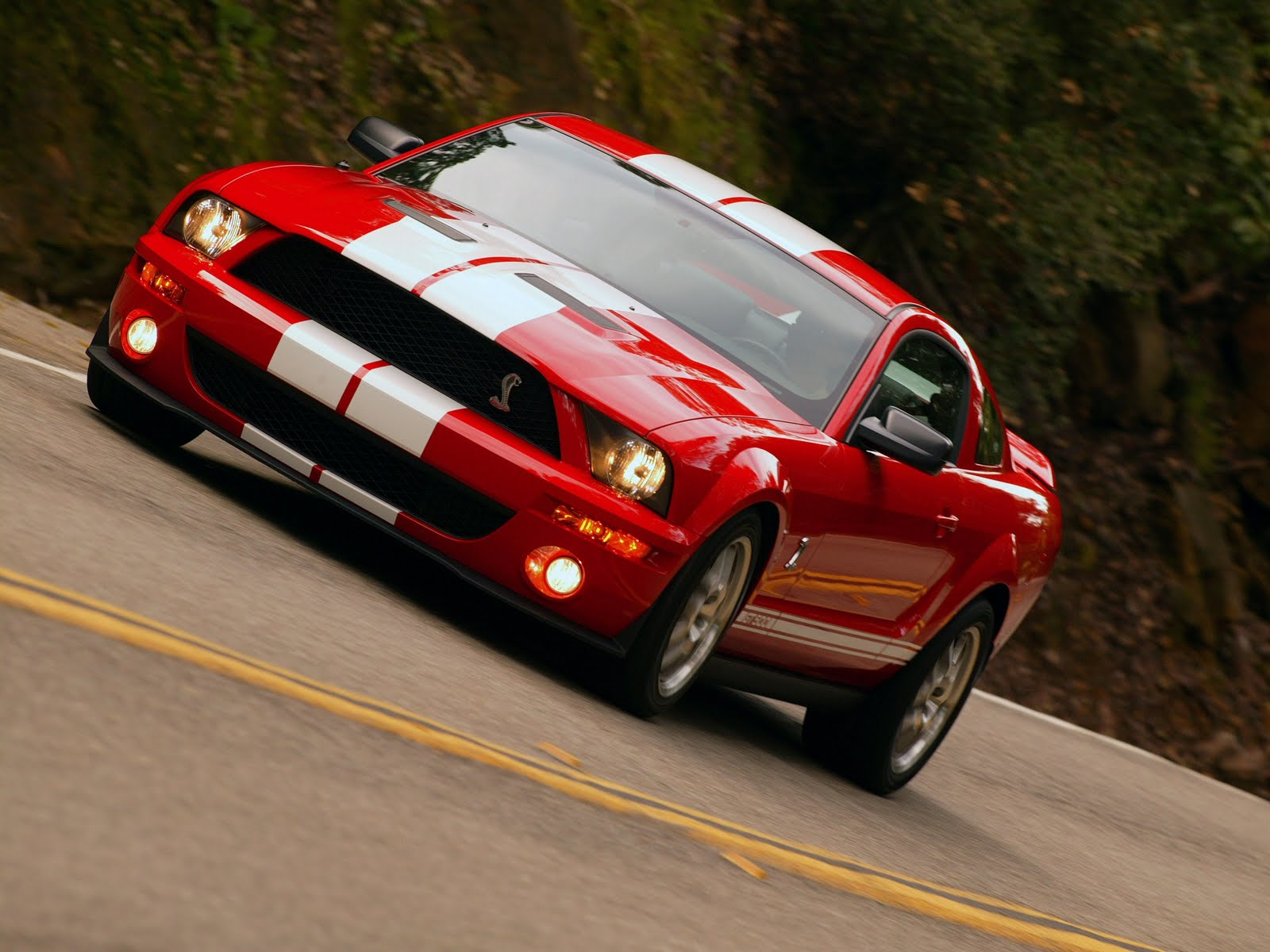 ford mustang ford mustang shelby gt500. Black Bedroom Furniture Sets. Home Design Ideas