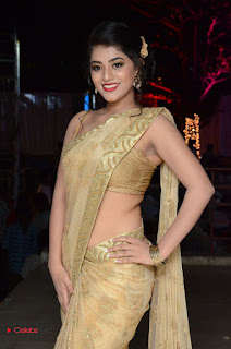 Actress Yamini Bhasker Pictures in Saree at anic Movie Audio Launch  0010.JPG