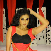 Exotic sexy Priyamani in chandi movie hot stills