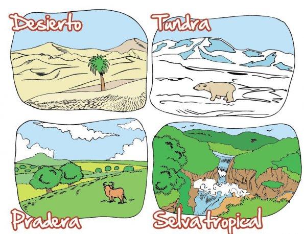 Animales del desierto yahoo dating 4