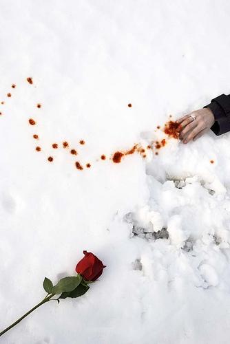 Resultado de imagen para rastro de tu sangre en la nieve