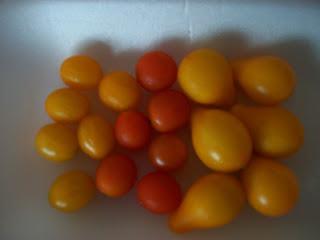 tomates cherry, amarillos y rojos