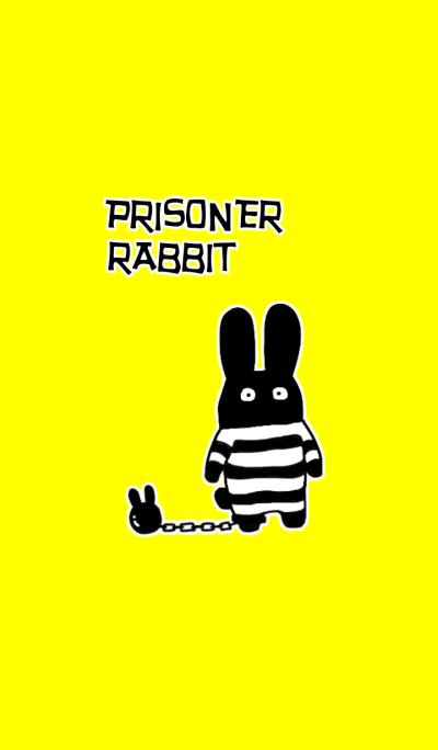 Prisoner rabbit