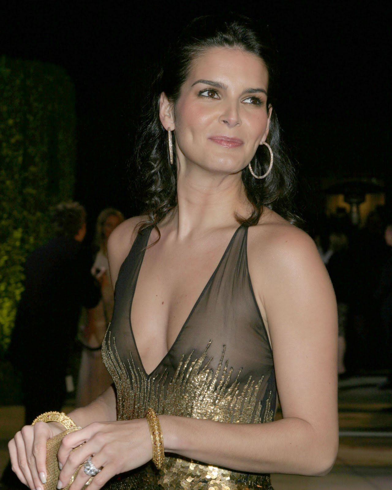 angie harmon nude photos