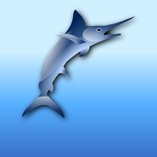 Facts about Sailfish