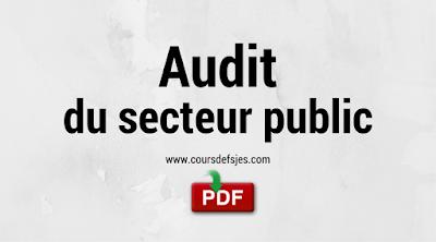 Audit du secteur public,