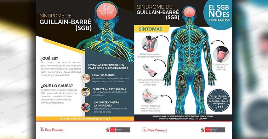 SÍNDROME GUILLAIN BARRÉ: Conoce qué es esta enfermedad SGB que puso en alerta al MINSA - www.minsa.gob.pe