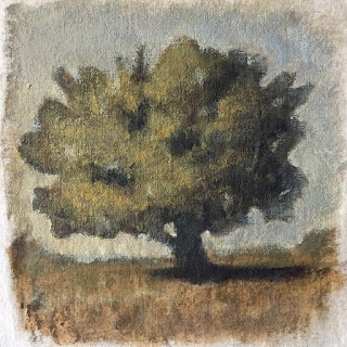 Daily Art 08-25-2018 tree study exercise with final opaque layer