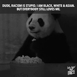 "A picture of a panda and the statement: ""Dude, racism is stupid.  I am black, white, & Asian. But everybody still loves me."""