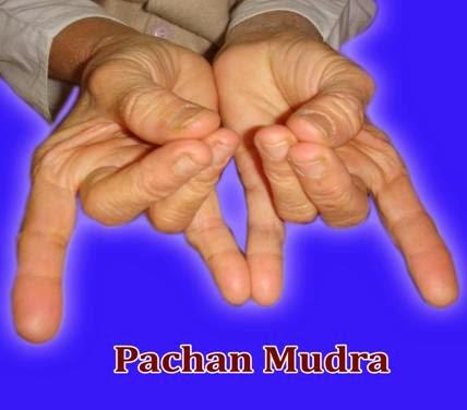 PACHAN MUDRA