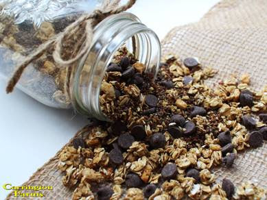 Homemade Cinnamon Granola Recipe
