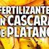 Organico: 5 Fertilizantes orgánicos  a base de plátano .- Los  Mejores