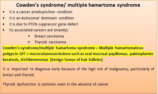 Cowden's syndrome or multiple hamartoma syndrome