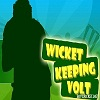 Play Wicket Keeping Volt cricket game