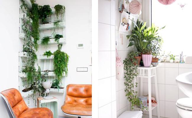 10 im genes para decorar con plantas for Plantas salon