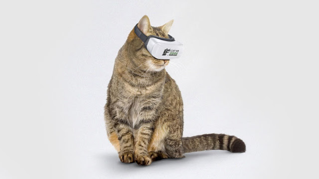 Cat VR device