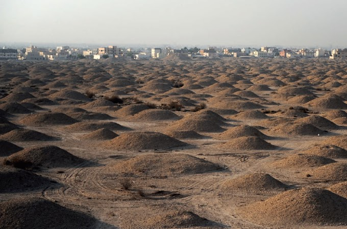 Experts focus on Bahrain's Tree of Life site and A'ali burial mounds