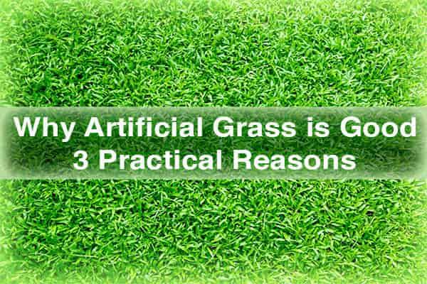 Why Artificial Grass is Good | 3 Practical Reasons | How Webs