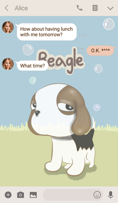 Beagle scowl